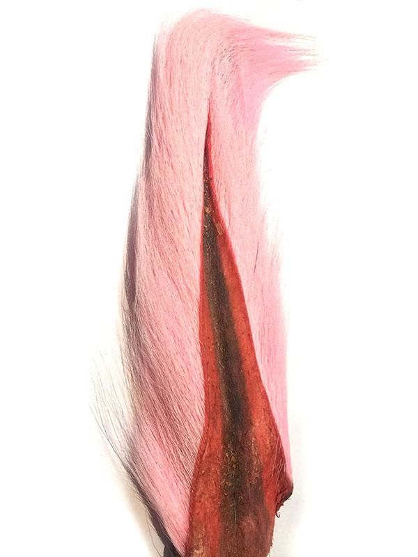 Bucktail M Pink