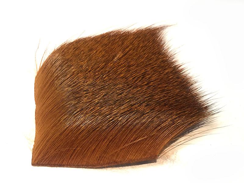 Deer Golden Brown