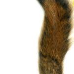 Pine Squirrel Tail Natural