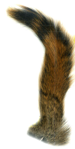 Pine Squirrel tail- Natural