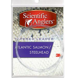 Salmon leader