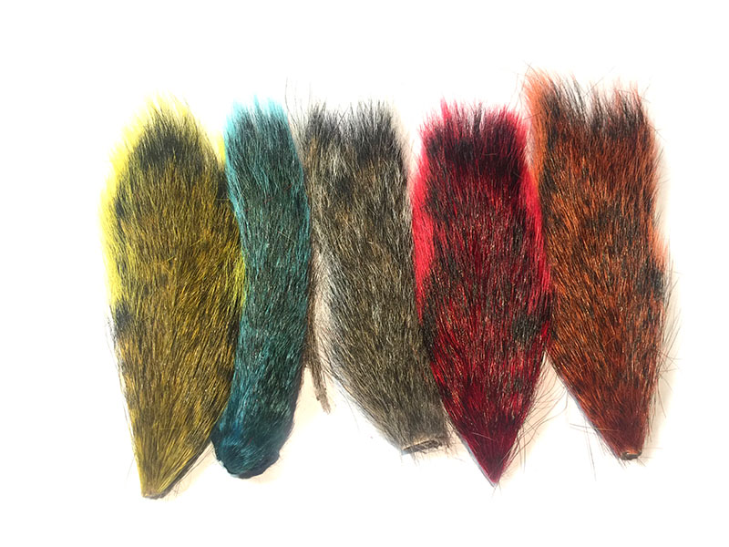 Squirrel Tail Mix