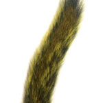 Squirrel Tail Yellow