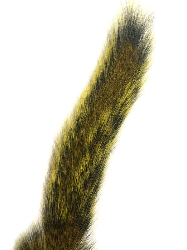 Squirrel Tail – Yellow