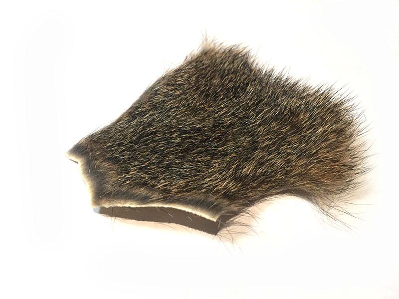 Squrrel Natural Fox